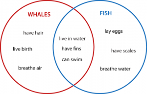 Venn diagram comparing whales and fish