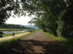 Kamogawa River, May 9th, 2014