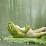 frog-chillout